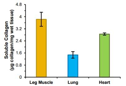 Estimation of acid-soluble collagen content in rat tissues.