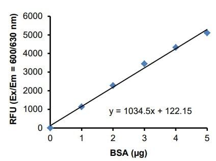 BSA Standard Curve.