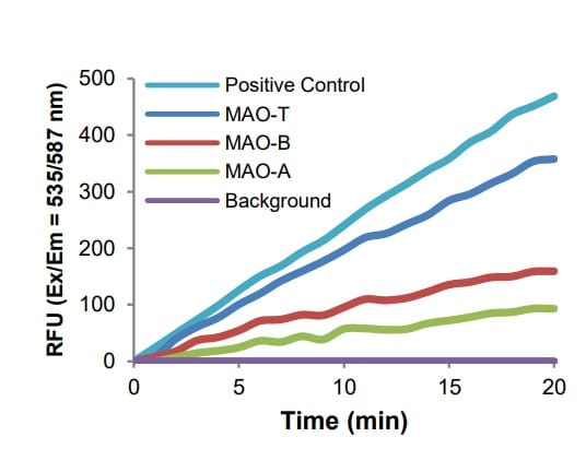 MAO-T, MAO-A and MAO-B activities in mouse brain lysate (2.5 µg)