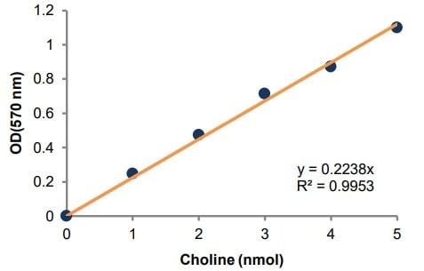 Choline standard curve.