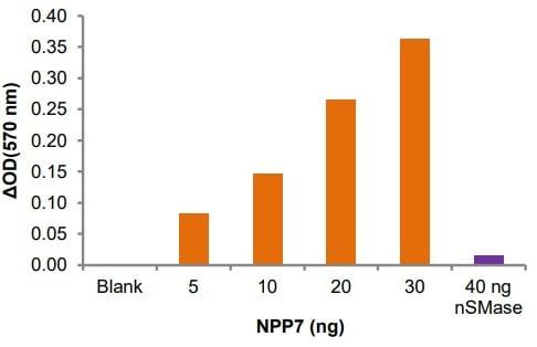 Alkaline Sphingomyelinase activity of NPP7.
