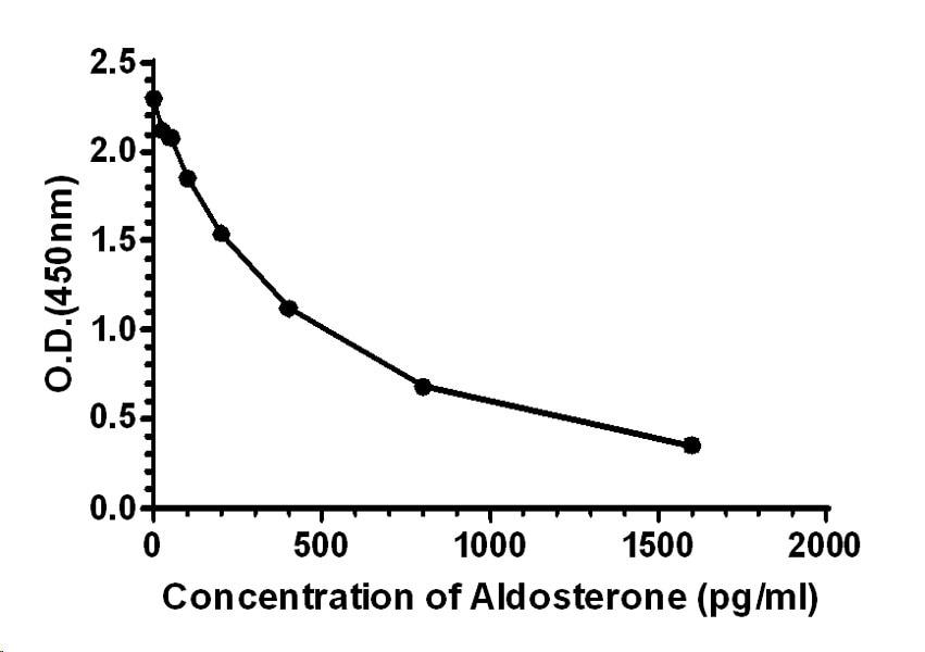 ELISA - Anti-Aldosterone antibody [EPPTX-R9-134-1] (ab241065)