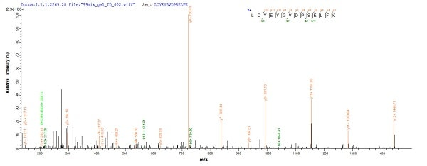 Mass Spectrometry - Recombinant <em>S. cerevisiae</em> 2-deoxyglucose-6-phosphate phosphatase 1 protein (His tag) (ab241228)