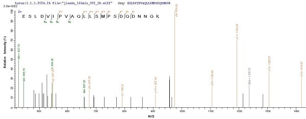 Mass Spectrometry - Recombinant Mouse Osteopontin protein (His tag) (ab241241)