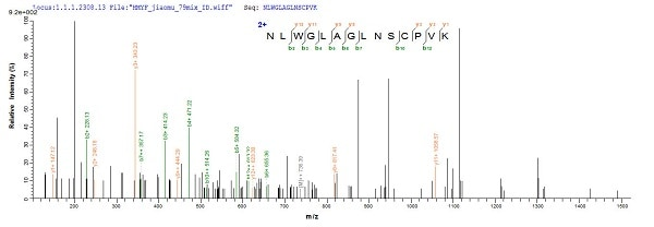 Mass Spectrometry - Recombinant Cynomolgus monkey IL-4 protein (His tag) (ab241268)