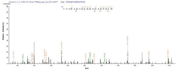 Mass Spectrometry - Recombinant Guamerin protein (His tag) (ab241387)