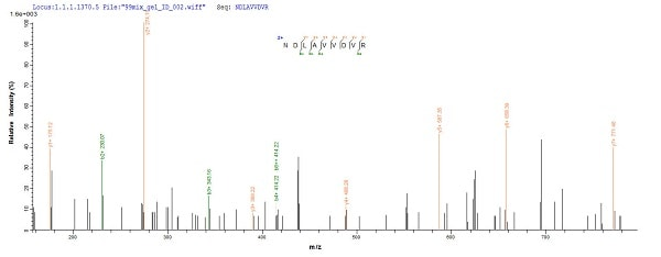 Mass Spectrometry - Recombinant Human Nucleolin protein (His tag) (ab241527)