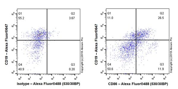 Flow Cytometry - Anti-CD86 antibody [EPR22958-106] (ab242142)