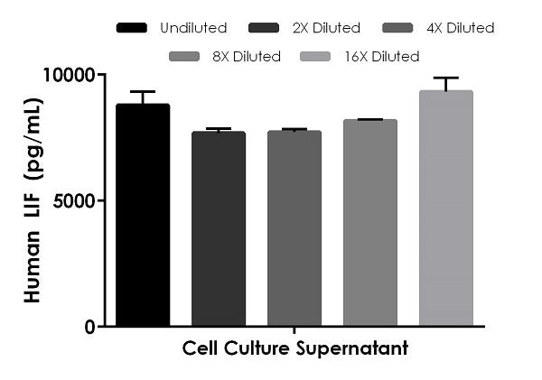 Interpolated concentrations of native LIF in human cell culture supernatant samples.
