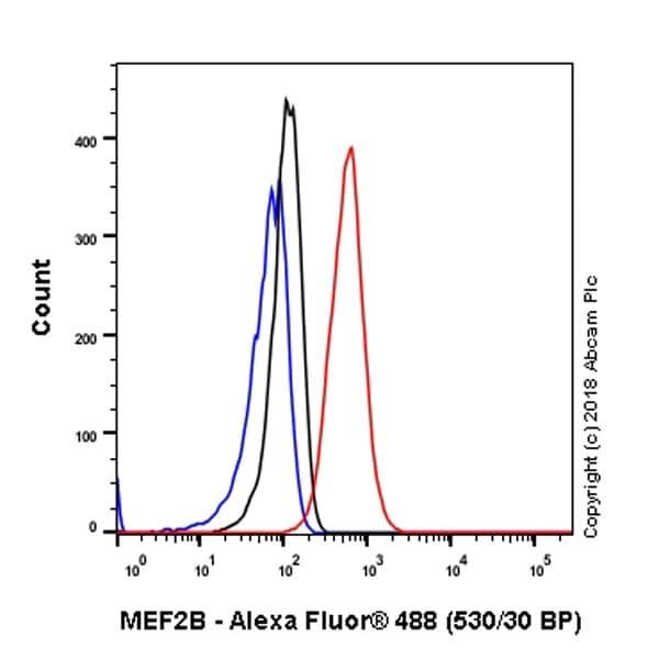 Flow Cytometry - Anti-MEF2B antibody [EPR22193-78] - BSA and Azide free (ab242332)