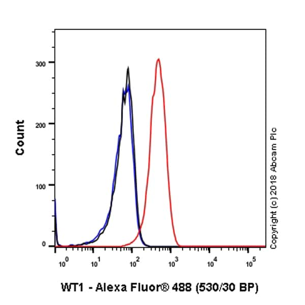 Flow Cytometry - Anti-Wilms Tumor Protein antibody [SP320] - BSA and Azide free (ab242423)