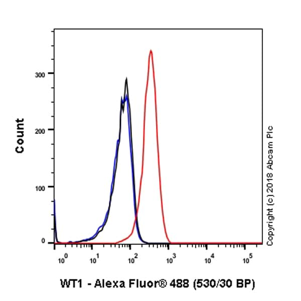 Flow Cytometry - Anti-Wilms Tumor Protein antibody [SP321] - BSA and Azide free (ab242425)
