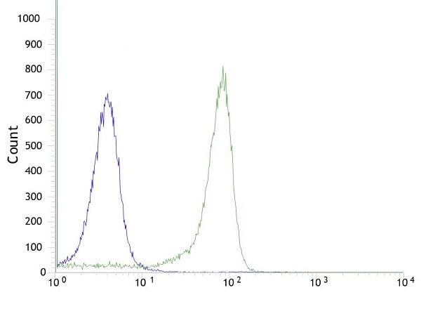 Flow Cytometry - Anti-TTF1 antibody [SP141] - BSA and Azide free (ab242428)