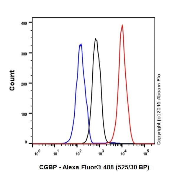 Flow Cytometry - Anti-CGBP antibody [EPR19199] - BSA and Azide free (ab242431)