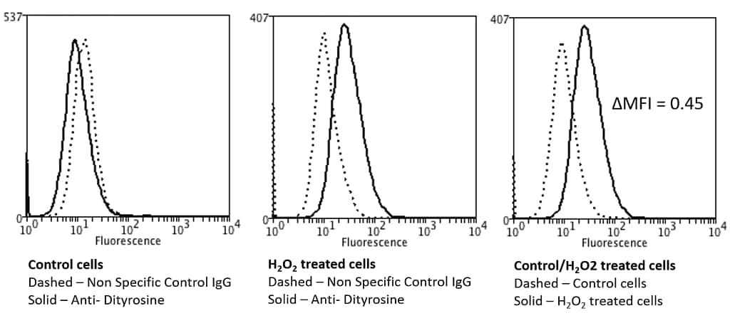 Flow Cytometry - Anti-Dityrosine antibody [10A6] (ab243067)