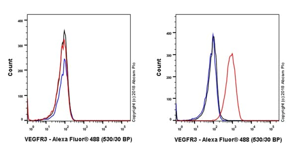 Flow Cytometry - Anti-VEGF Receptor 3 antibody [EPR22293-58] (ab243233)
