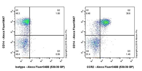 Flow Cytometry - Anti-CCR2 antibody [EPR22191] - BSA and Azide free (ab243292)