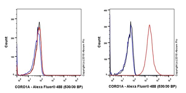 Flow Cytometry - Anti-Coronin 1a/TACO antibody [EPR19467-81] - BSA and Azide free (ab243566)