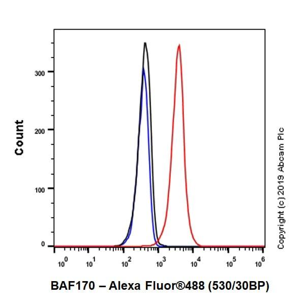 Flow Cytometry - Anti-BAF170 antibody [EPR23066-21] (ab243634)