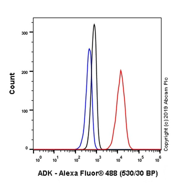 Flow Cytometry - Anti-ADK antibody [EPR23166-143] (ab243636)