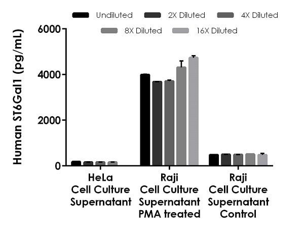 Interpolated concentrations of native ST6Gal1 in cell culture supernatant samples.