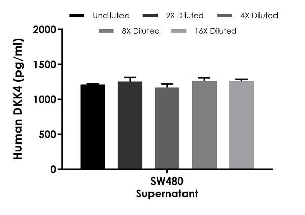 Interpolated concentrations of native DKK4 in human SW480 cell culture supernatant samples.