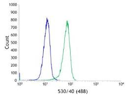 Flow Cytometry - Anti-Smad4 antibody [SP306] - BSA and Azide free (ab243929)