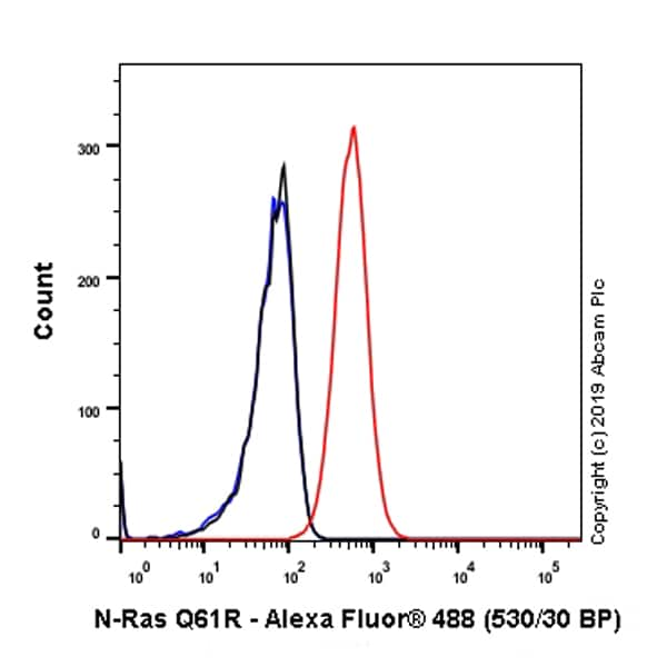 Flow Cytometry - Anti-NRAS (mutated Q61 R) antibody [SP174] - BSA and Azide free (ab243933)
