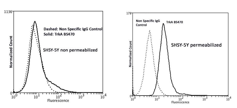 Flow Cytometry - Anti-TrkA antibody [BS470] - Extracellular domain (ab244209)