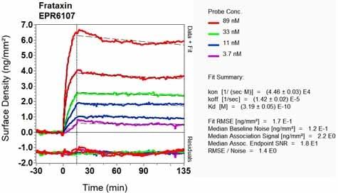OI-RD Scanning - Anti-Frataxin antibody [EPR6107] - BSA and Azide free (ab244232)