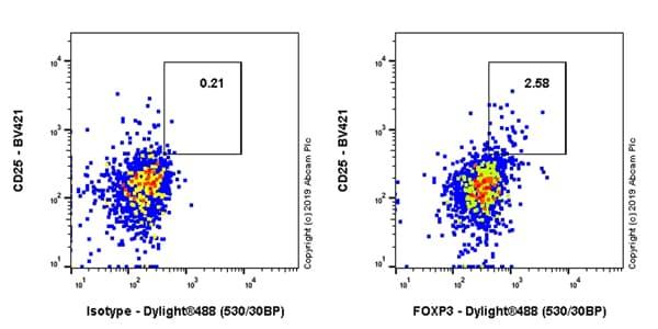 Flow Cytometry - Anti-FOXP3 antibody [EPR22102-37] - BSA and Azide free (ab244242)