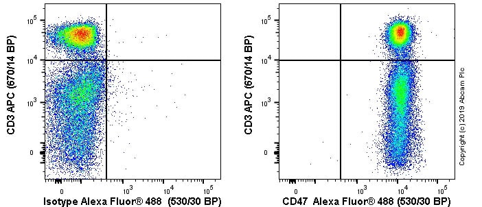 Flow Cytometry - Anti-CD47 antibody [OX-101] - BSA and Azide free (ab244567)