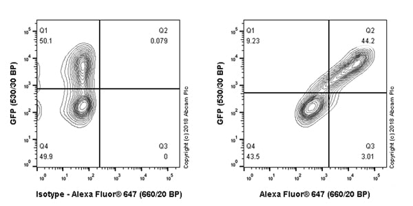 Flow Cytometry - Anti-6X His tag® antibody [JPAR-2] - BSA and Azide free (ab245203)