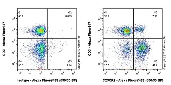 Flow Cytometry - Anti-CX3CR1 antibody (ab245248)