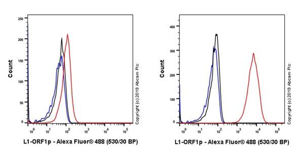 Flow Cytometry - Anti-LINE-1 ORF1p antibody [EPR22227-6] (ab245249)