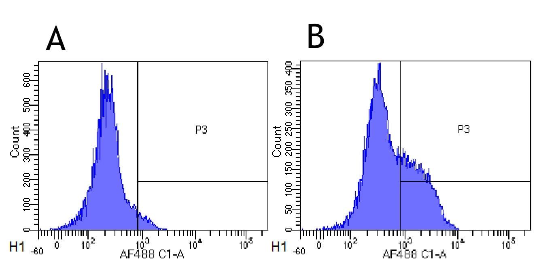 Flow Cytometry - Anti-CD52 antibody [Campath-1H] (ab245681)