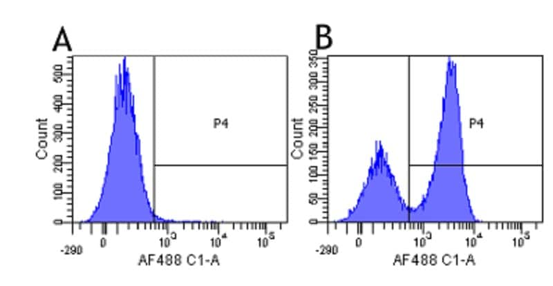 Flow Cytometry - Anti-CD172 gamma antibody [OX117] (ab245690)