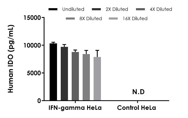 Interpolated concentrations of native IDO in IFN stimulated HeLa cell extracts based on a 20 µg/mL extract load.