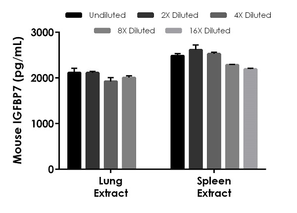 Interpolated concentrations of native IGFBP7 in mouse lung extract (25 ug/mL load) and spleen extract (50 ug/mL load).