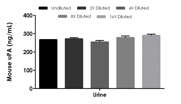 Interpolated concentrations of native uPA in mouse urine.