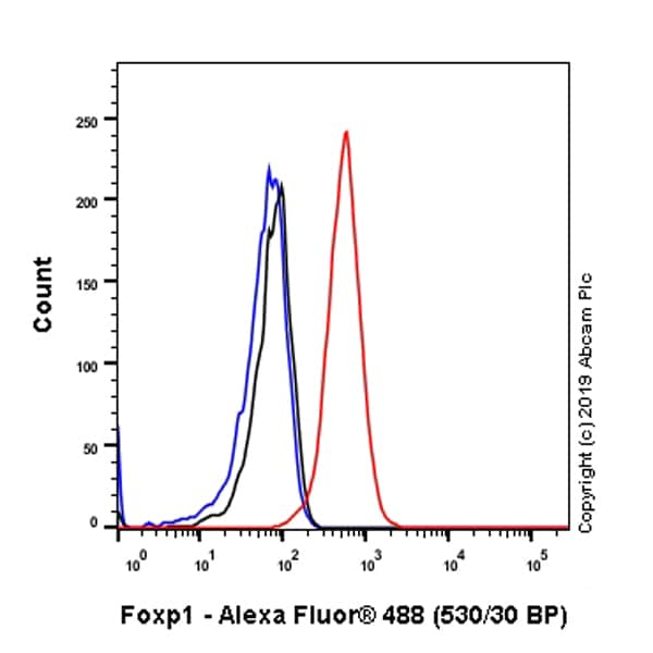 Flow Cytometry - Anti-FOXP1 antibody [SP133] - BSA and Azide free (ab245739)