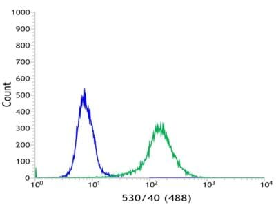 Flow Cytometry - Anti-VPAC1 antibody [SP234] - BSA and Azide free (ab245743)
