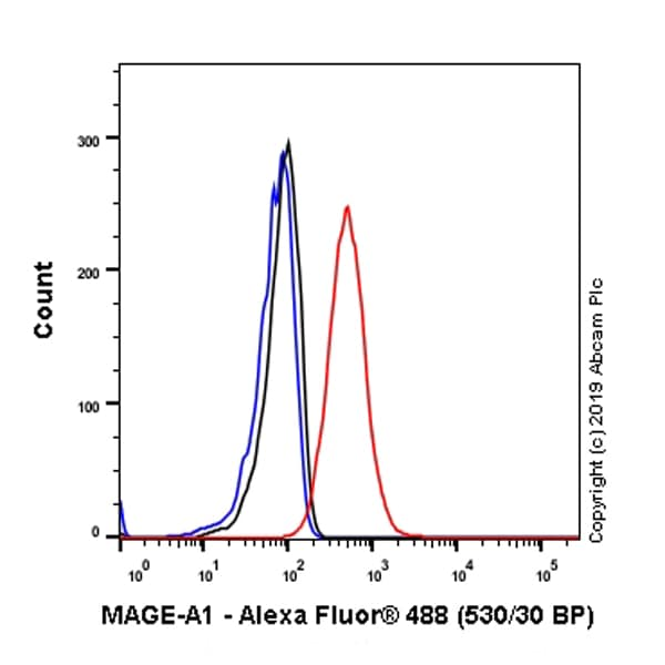 Flow Cytometry - Anti-MAGEA1 antibody [SP194] - BSA and Azide free (ab245755)