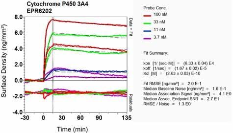 OI-RD Scanning - Anti-Cytochrome P450 3A4/CYP3A4 antibody [EPR6202] - BSA and Azide free (ab245774)