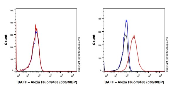 Flow Cytometry - Anti-BAFF antibody [EPR22238] - BSA and Azide free (ab245833)