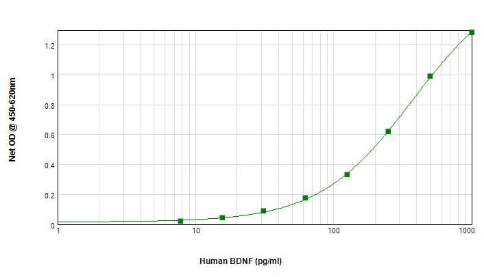Sandwich ELISA - Anti-BDNF antibody (Biotin) (ab245864)