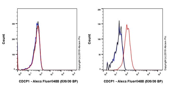 Flow Cytometry - Anti-CDCP1 antibody [EPR22487-231] - BSA and Azide free (ab245983)