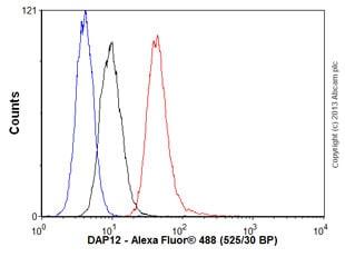 Flow Cytometry - Anti-DAP12 antibody [EPR5173] - BSA and Azide free (ab246001)