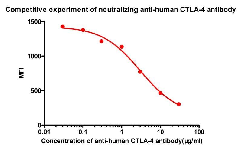 Functional Studies - Recombinant human CD80 protein (Active) (Biotin) (ab246032)