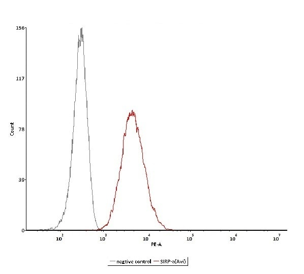 Functional Studies - Recombinant human SIRP alpha protein (Active) (Biotin) (ab246052)